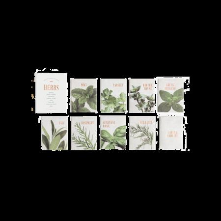 Herb Seed Kit