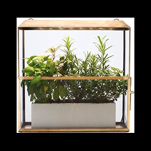Growhouse Growlight + Greenhouse