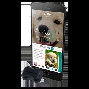 Fitbark 2 Dog Activity & Sleep Monitor