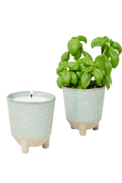 Glow and Grow Scented Candle
